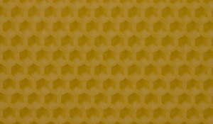 1.1011 Mittelwände Dadant Honigraum Image